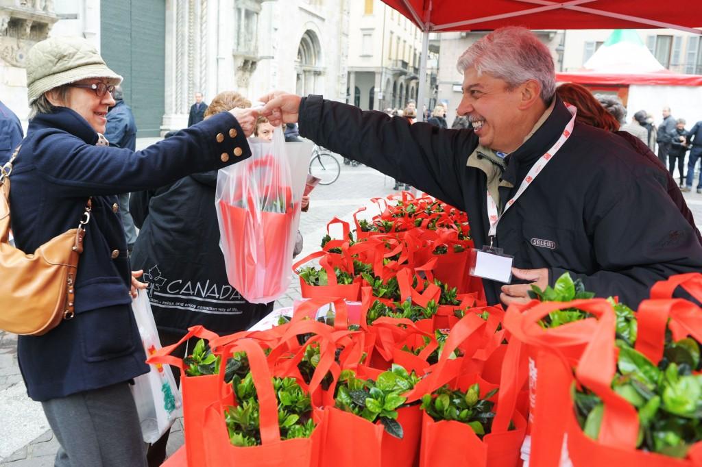 Como piazza Duomo banchetto dell'Aism con la vendita di gardenie